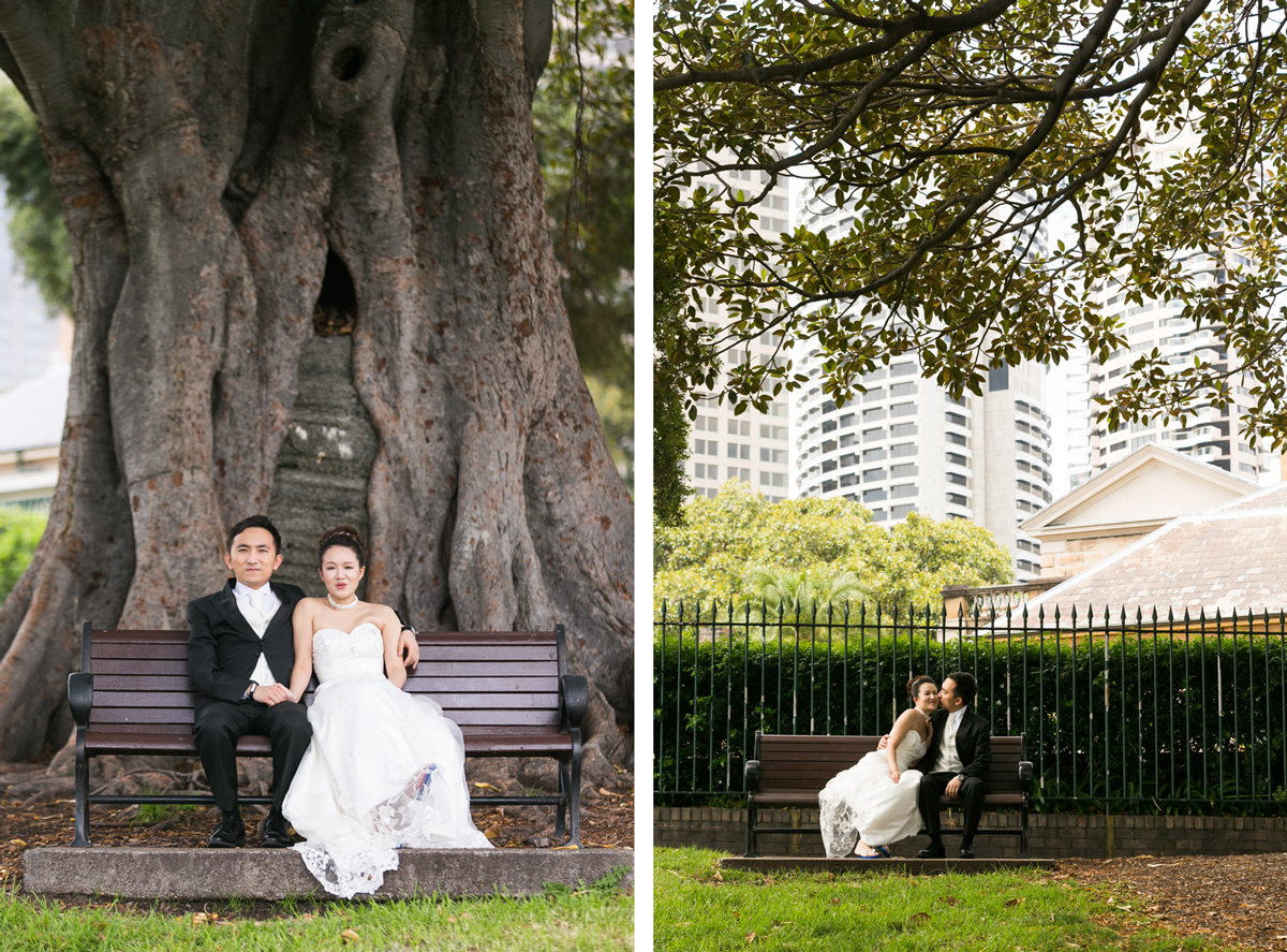 Dual candid shots of the bride and groom sitting on two different park benches under large fig trees Sydney wedding photographer