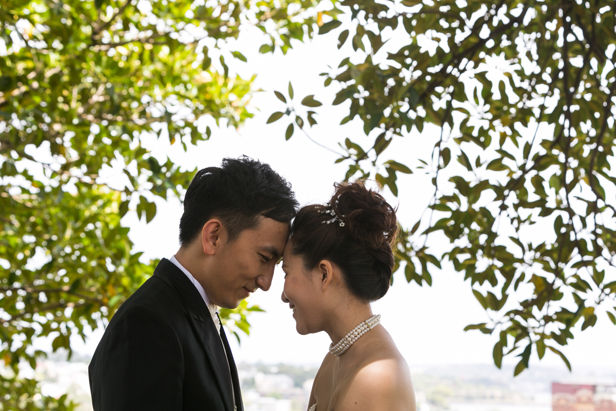 The bride and groom with foreheads together surrounded by green leaves from fig trees Sydney wedding photographer