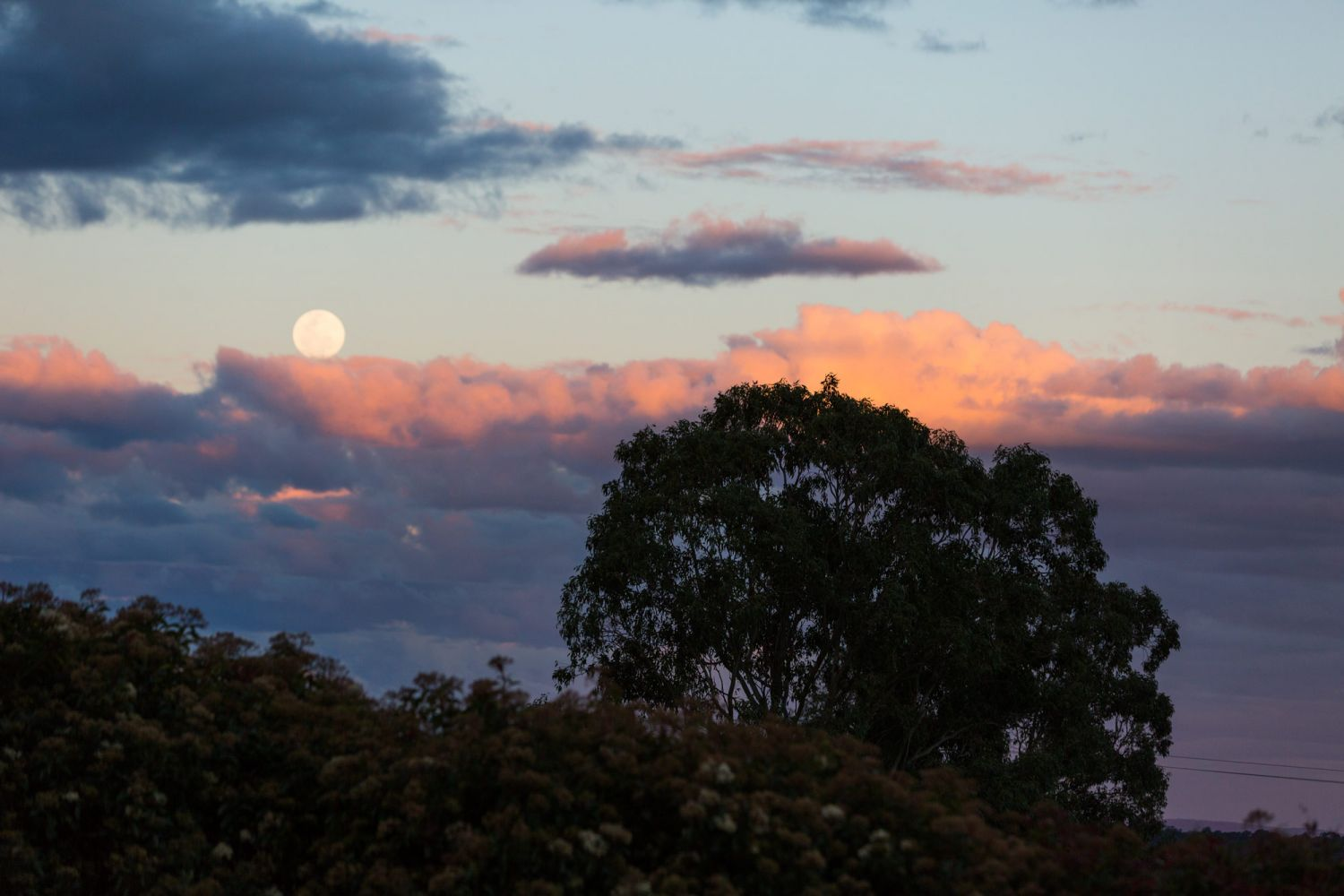 24_moon-rise-captured-by-wedding-photographer-in-hunter-valley